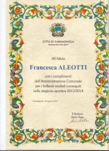 TORNEO GAF I LIVELLO ALEOTTI F. 2013-2014