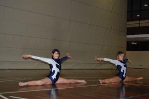 divise ginnastica 038
